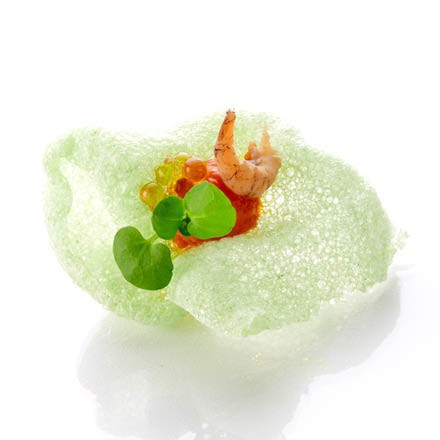 Appetizer with cracker wasabi